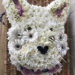 floral tribute for funeral cat